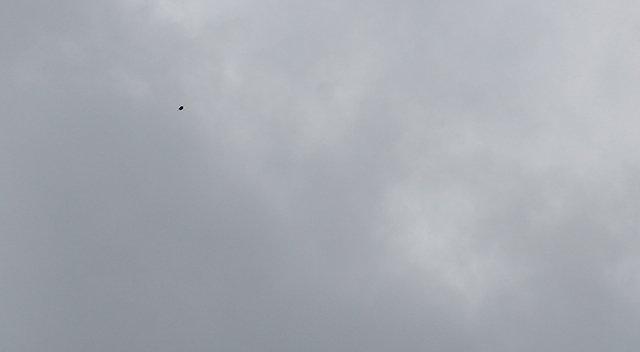 PAX River Maryland UFO